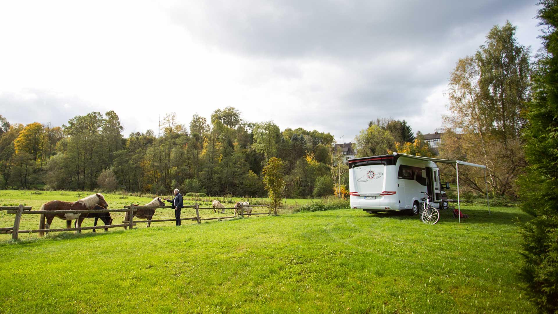 Camping Wiese mit Wohnmobild und Pferden_