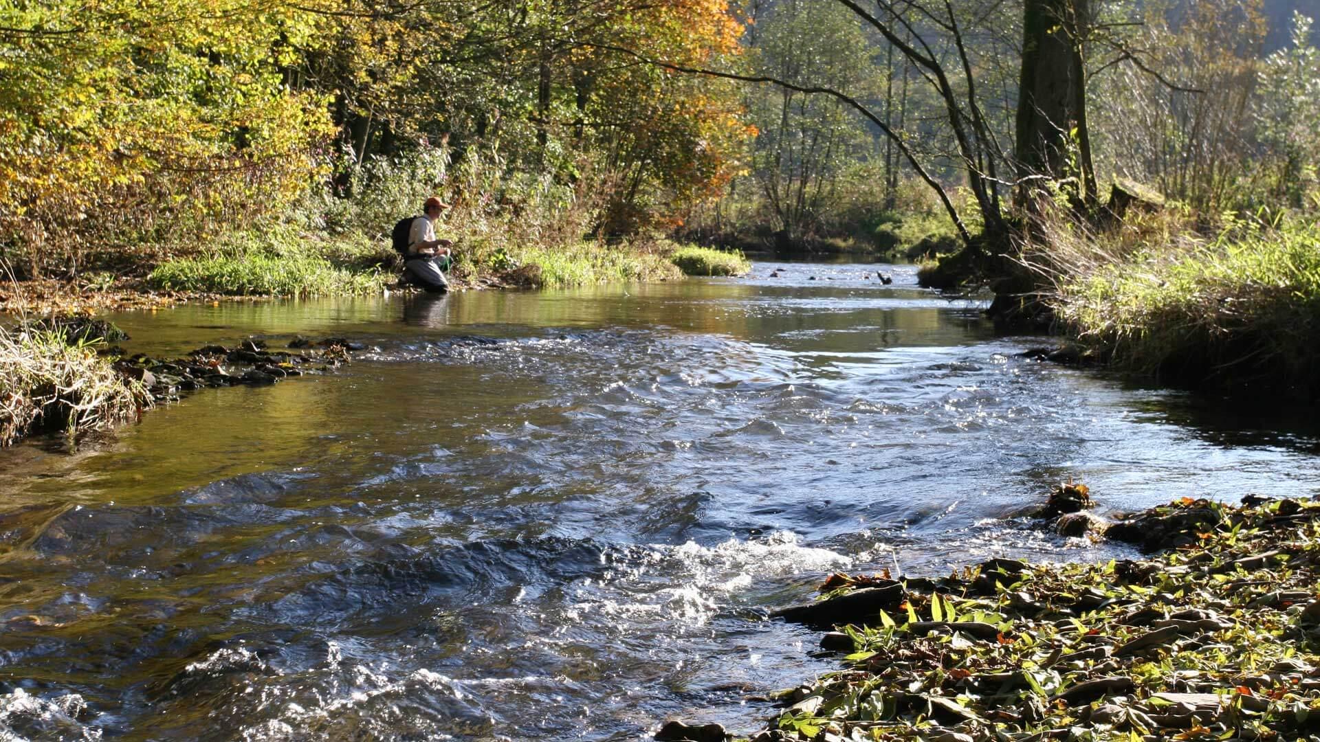 Fliegenfischen an der Wenne Flusslauf mit Angler