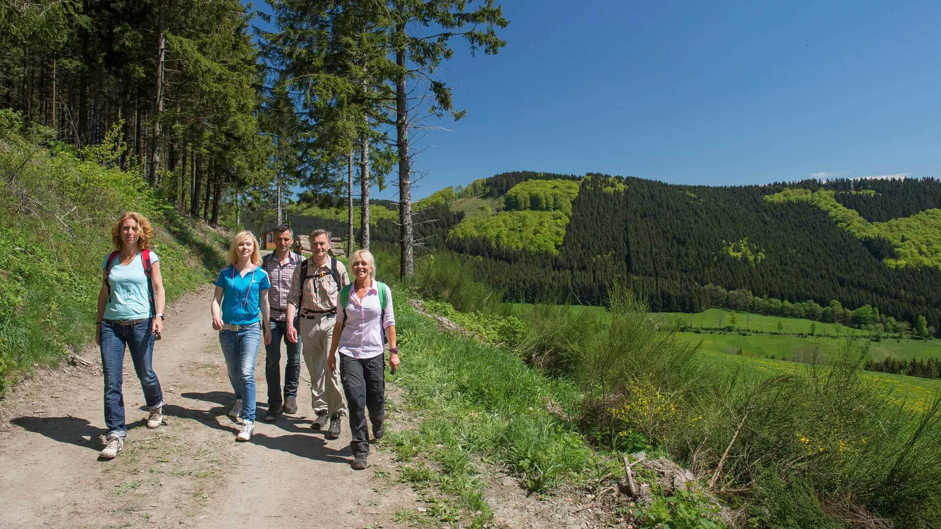 Wandern im Sauerland Gruppe am Waldesrand