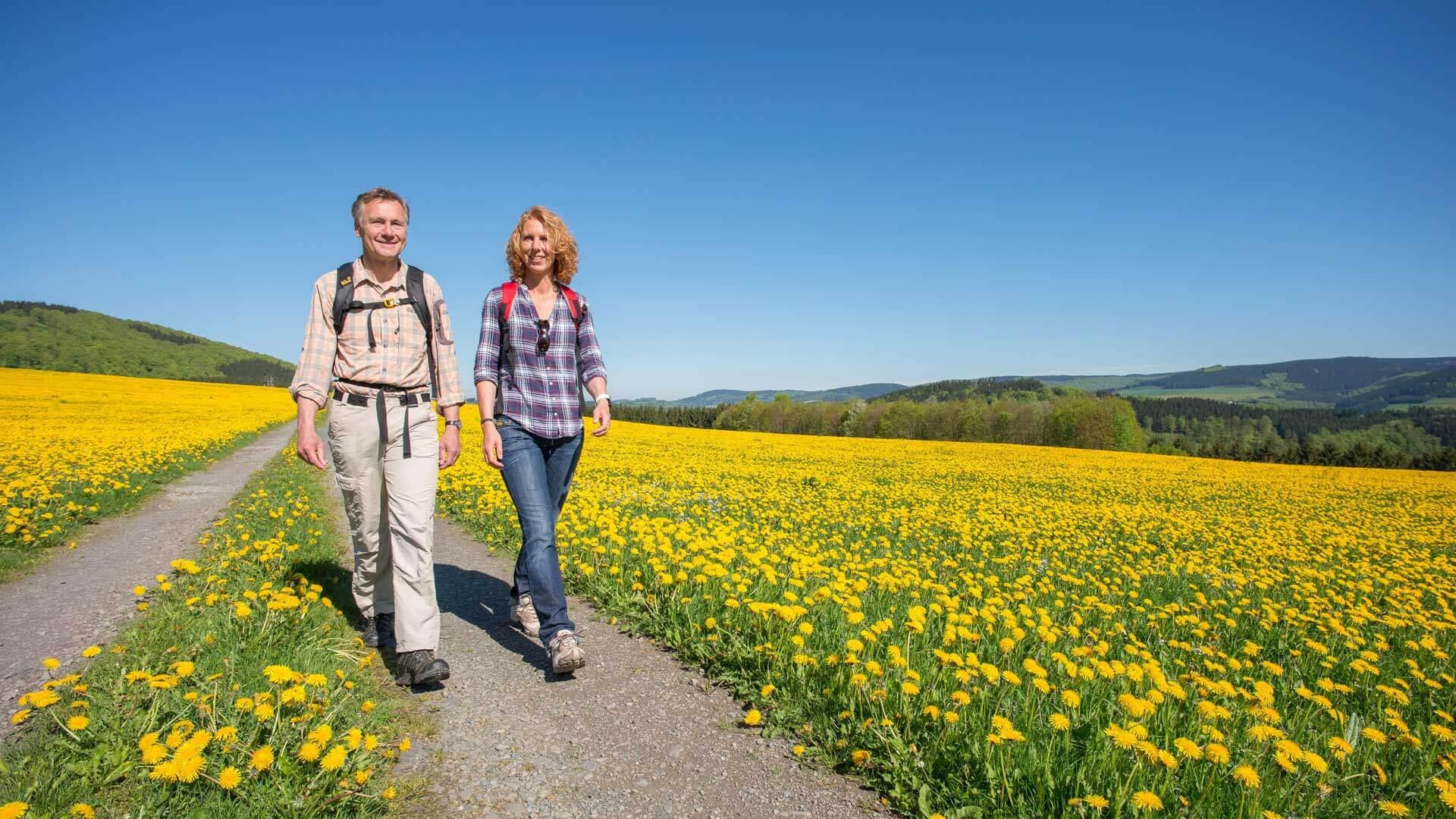 Wandern im Sauerland Paar auf der Frühlingswiese